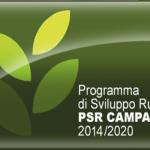 P.S.R. Campania 2014 - 2020 Piano Sviluppo Rurale Campania Investimenti in Agricoltura